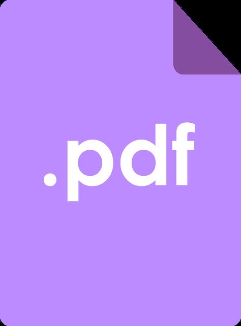 PDF icon 2
