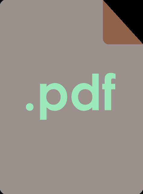PDF icon 7